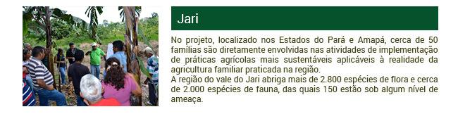 Projeto Jari