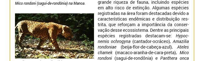 Projeto REDD+ Manoa direciona esforços para trabalhar benefícios excepcionais para a Biodiversidade
