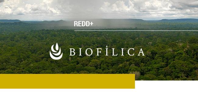 Biofílica REDD+