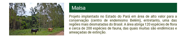 Projeto Maísa