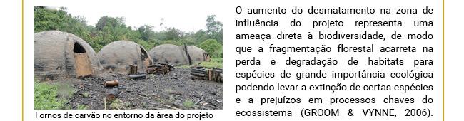 Projeto REDD+ Maísa