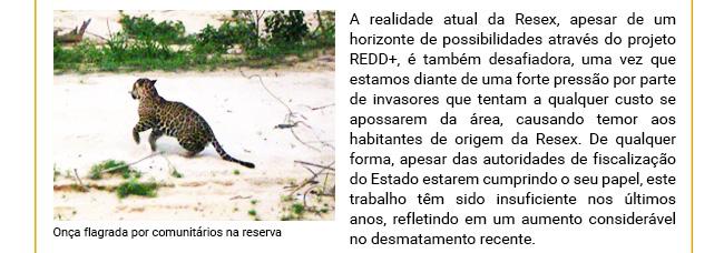 Projeto REDD+ Rio Preto Jacundá