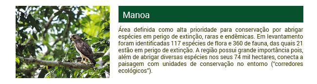 Projeto Manoa