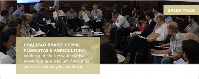 Coalizão Brasil Clima, Florestas e Agriculturas