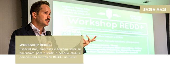 Workshop REDD+: Especialistas, empresas e terceiro setor se encontram para discutir o cenário atual e perspectivas futuras do REDD+ no Brasil