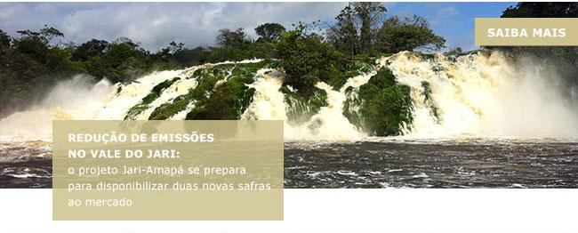 Redução de emissões no Vale do jari: o projeto Jari-Amapá se prepara para disponibilizar duas novas safras ao mercado