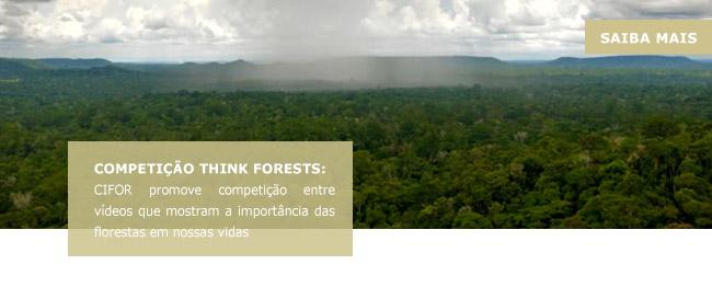 Competição Think Forests