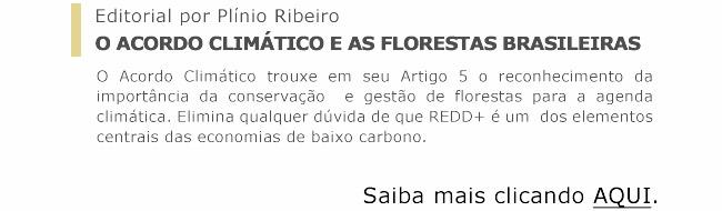 O Acordo Climático e as florestas brasileiras