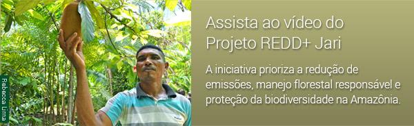 Assista ao Vídeo do Projeto REDD+ Jari