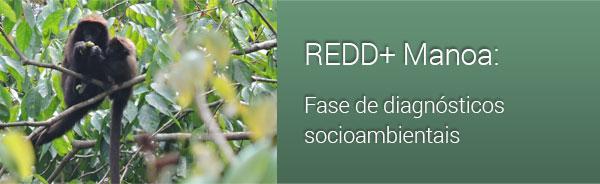 REDD+ Manoa